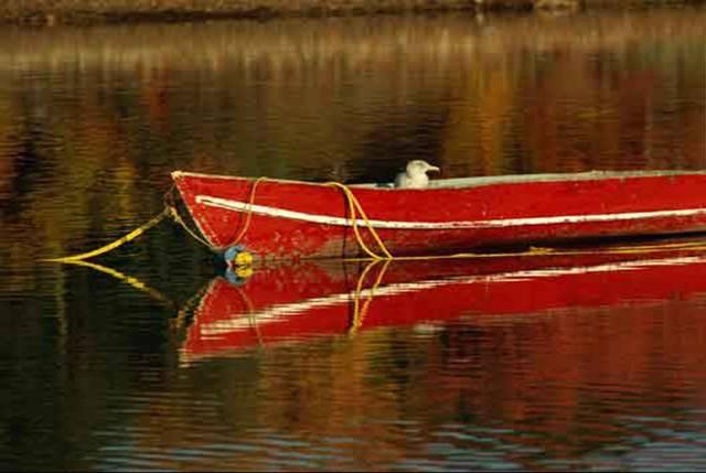 Un orificio en el barco