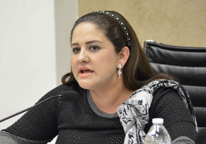 Avala GPPAN dictamen para evitar que los derechos de niños y niñas sean violentados