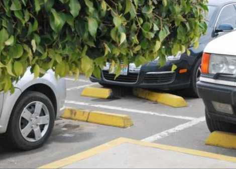 Algo debe ocurrir y ya. Si no hay estacionamiento para todos, no hay exclusivos para nadie