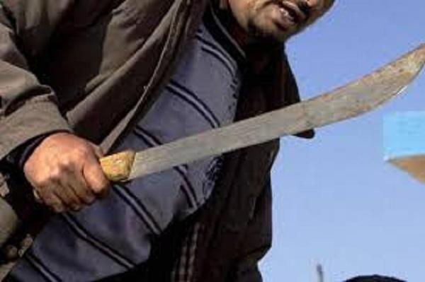 Cómo dominar a los feroces macheteros sin tocarles un cabello