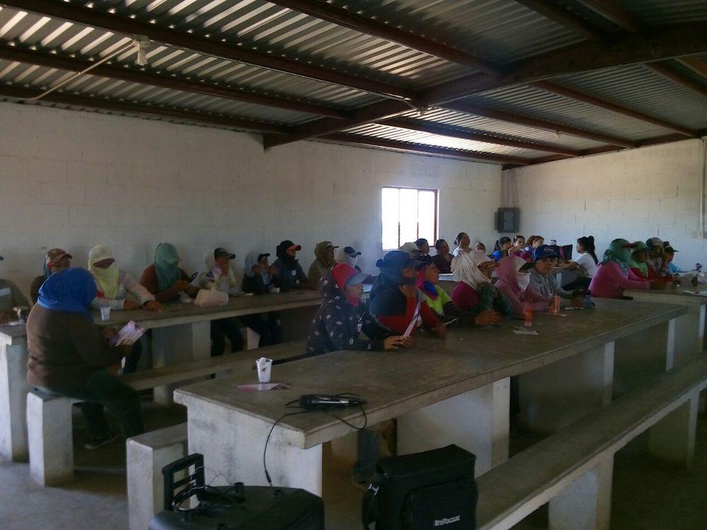 Capacitará ISM a jornaleras agrícolas en prevención de violencia
