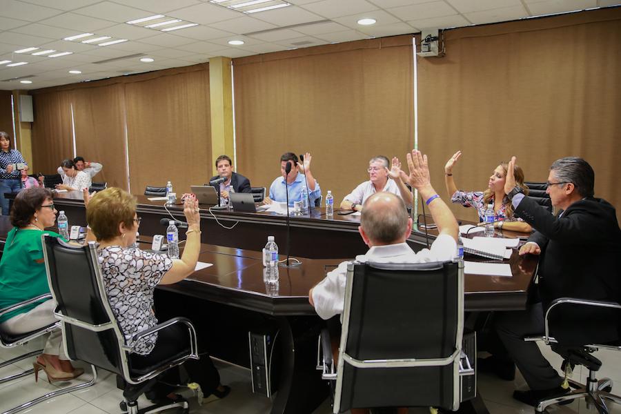 Aprueban convocatoria para seleccionar una integrante del Comité de Participación Ciudadana del SEA