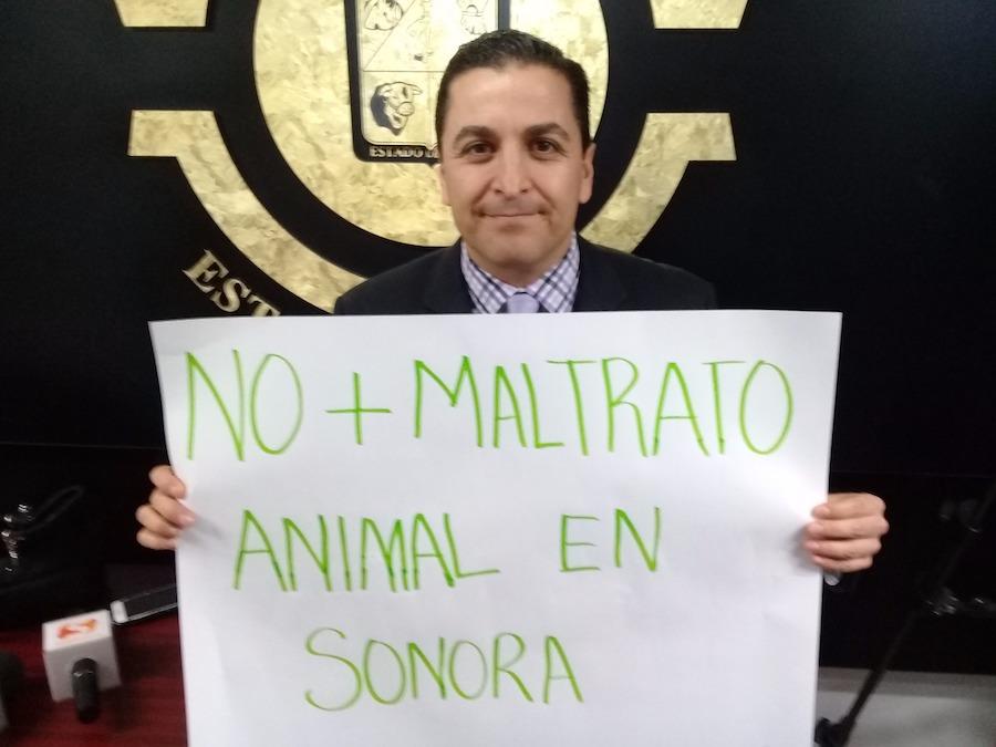 En Sonora, no hay tolerancia ante la crueldad contra los animales: David Palafox