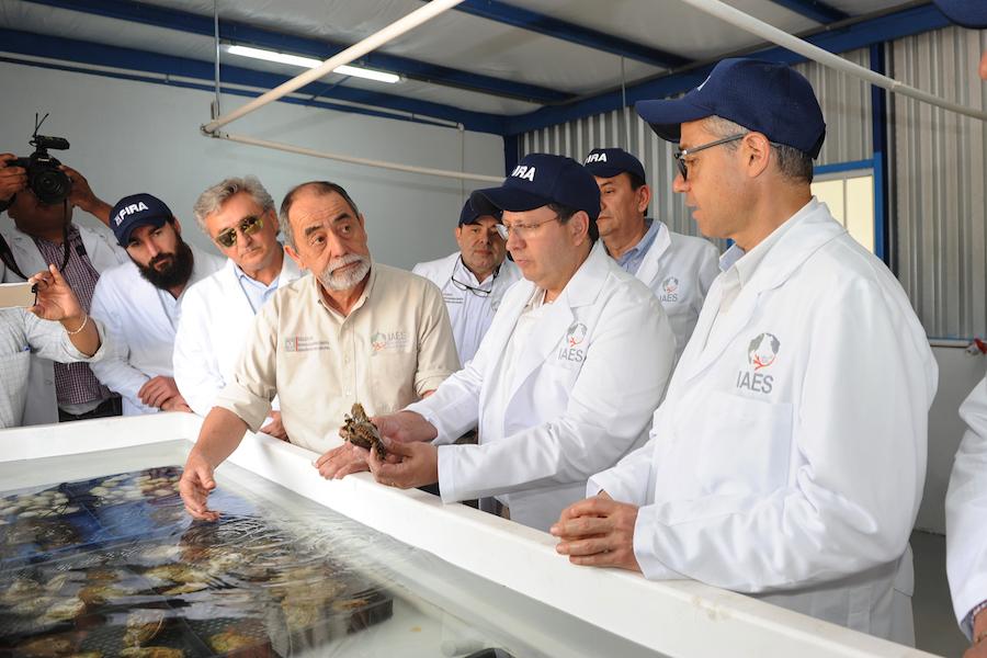 Busca SAGARHPA potenciar litorales de Sonora