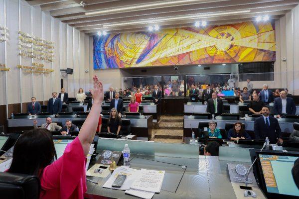 Sin vetos ni gritos, la reforma pasó la aduana del Congreso