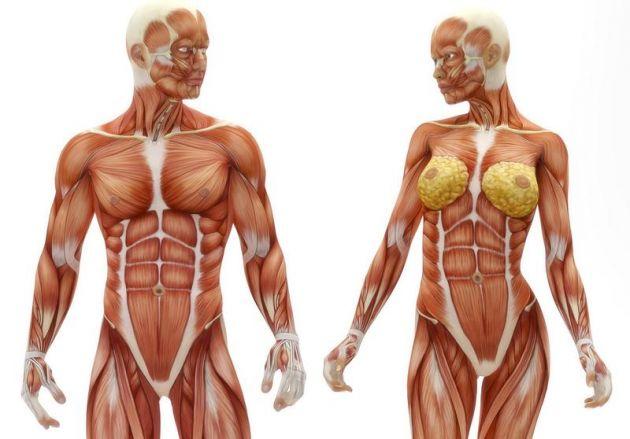 Cada parte del cuerpo significa algo en tu vida